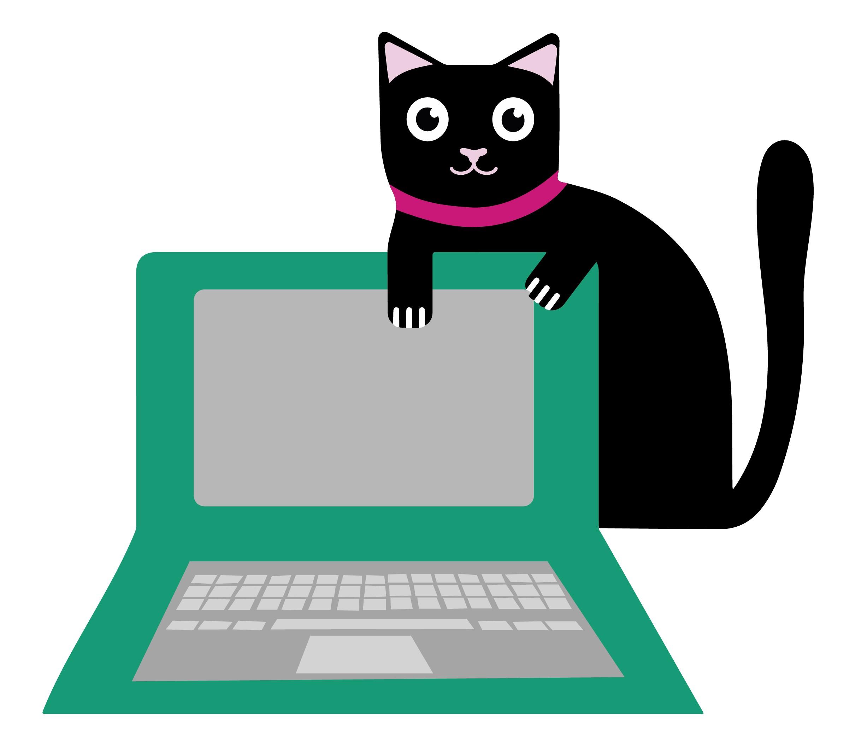 schwarze Katze mit Laptop-online-Katzentierärztin
